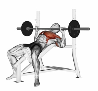 Press of a bar, lying on an incline bench. Exercising for bodybu